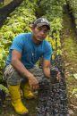 0120-David-erklaert-die-Kakaoanzucht